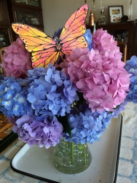 Totem Poppet Monarch in bouquet of hydrangeas.